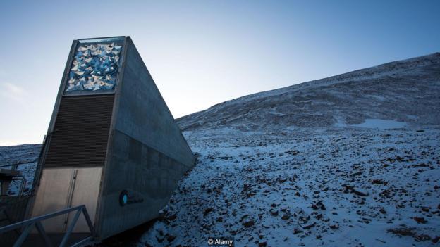 """2016年,位于挪威北極圈內永久凍土層地下的""""末日種子庫""""遭到了融化雪水的破壞。"""