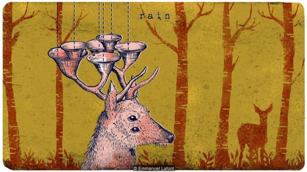 未来的某一天,鹿的鹿角可能会有新的用途