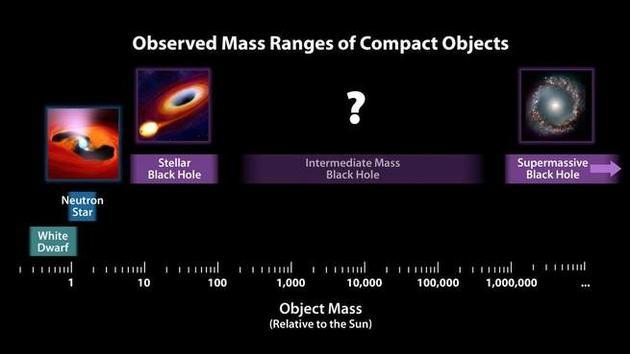 中等质量黑洞都藏到哪里去了?