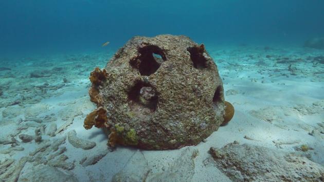 """一家名为""""永恒礁石(Eternal Reefs)""""的公司使用一种特殊混凝土,结合了火化后人类遗体骨灰,该混凝土制造的礁球进入海洋之后,海洋生物就会栖息在上面,让脆弱的海底生态系统健康发展。"""