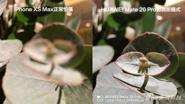 HUAWEI Mate 20 Pro评测:炫技和硬实力 这回稳了的照片 - 15