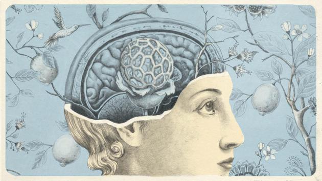 暴露在各种污染物中会导致大脑出现炎症,破坏大脑结构和神经连接