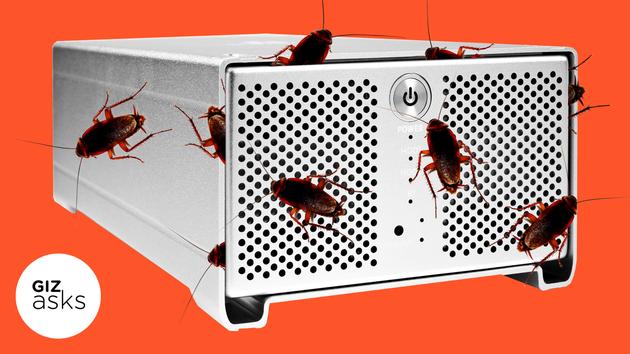 为何电脑里面会长蟑螂?