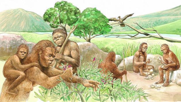 大约6万年前,150-1000名智人群体,从非洲东北部出发,穿越中东地区,之后到达欧亚大陆,他们并非首批迁徙的智人,但他们似乎已成为世界其他地区的人类祖先。
