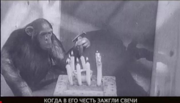 · 同来自俄罗斯导演德米特里·德明的纪录片