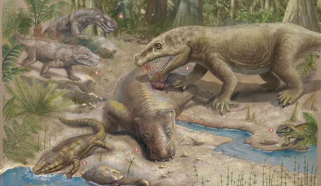 """以植物为食的钜颊龙是剑齿虎的猎物。这两个种群都在二叠纪末期的""""大灭绝事件""""中灭绝消失"""