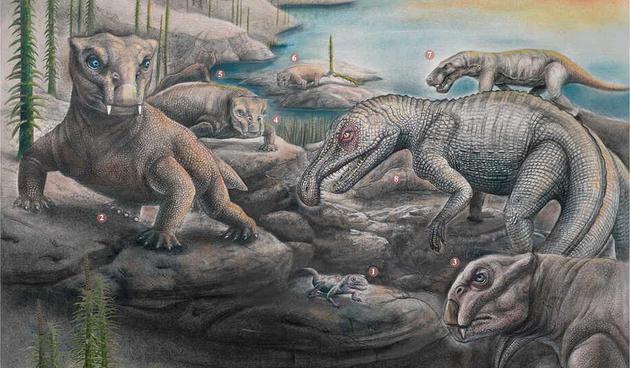 在二叠纪末期大规模物种灭绝之后,地球生态系统变得不同寻常,二齿水龙兽变得非常常见,占据地球生态系统90%的数量,物种多样性十分匮乏