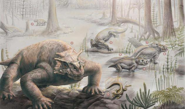 二叠纪末期,副颈龙已经长得体型庞大,而且有了自我保护的盔甲,其他草食动物包括被恐龙类捕食的双齿兽。这个复杂的生态系统在二叠纪末期大灭绝事件中崩溃了,只有少数双齿兽幸存下来