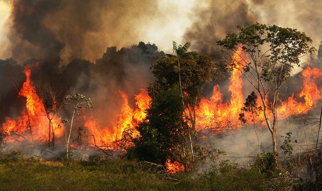 美国国家海洋和大气管理局(NOAA)的一幅卫星图像显示,8月12日,亚马逊西部部分雨林发生火灾