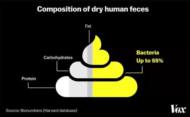 細菌占人類糞便重量的50%以上