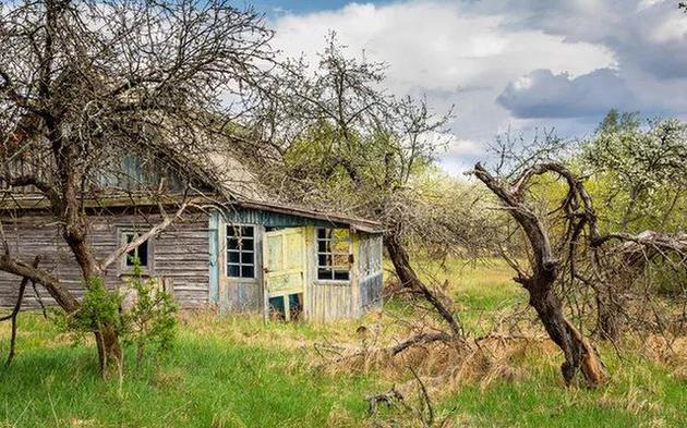 位于切爾諾貝利隔離區內的白俄羅斯村莊,房屋依然廢棄,但植被又煥發出生機