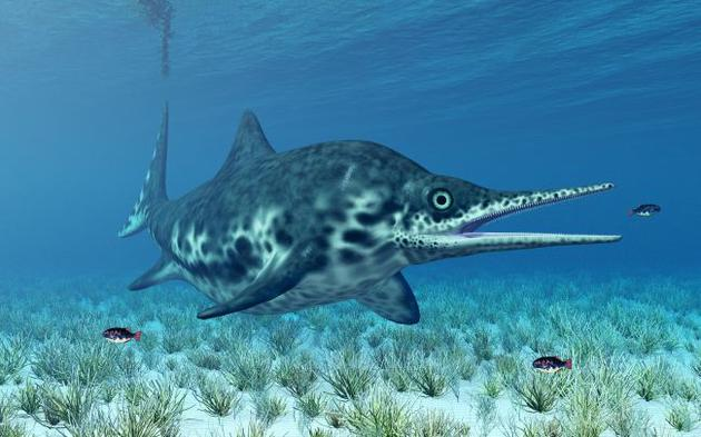 三叠纪时期怀胎鱼龙化石,死亡时体内有3只幼崽