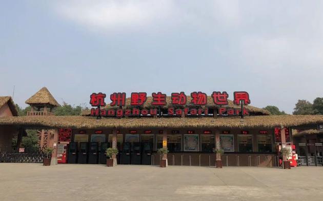2019年11月5日,杭州野生动物世界门口。开心愉悦婷婷五月记者 梁静怡 摄
