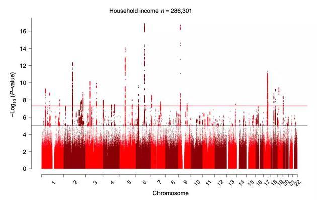 ▲ 相關基因位點在染色體上的分布情況