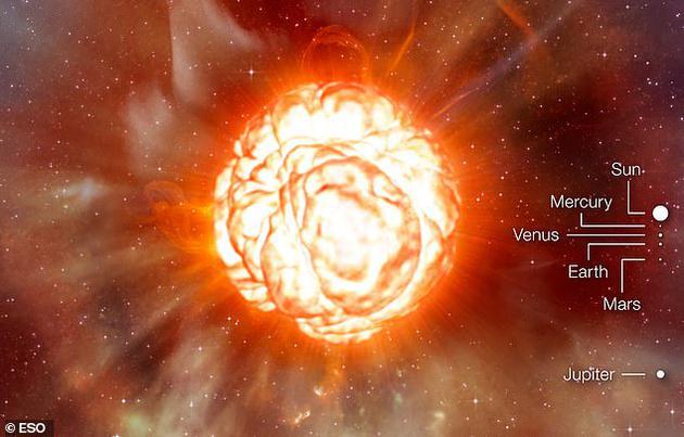如果参宿四位于太阳系中心,其边缘将抵达木星轨道,由于它的体积非常庞大,恒星表面引力小于质量相同、半径较小的恒星,因此像这样的恒星很容易外层产生亮度脉冲。