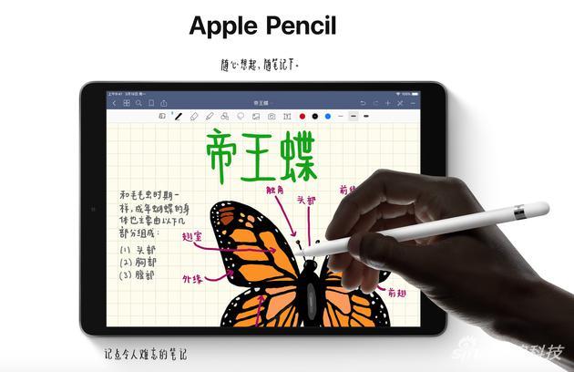 iPad Air可以用手写笔