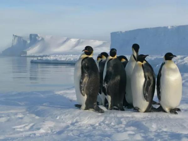 这张照片拍摄于英国南极考察站哈雷研究站附近的布伦特冰架上。图片来自英国南极调查局