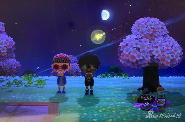 在别人的岛看流星许愿