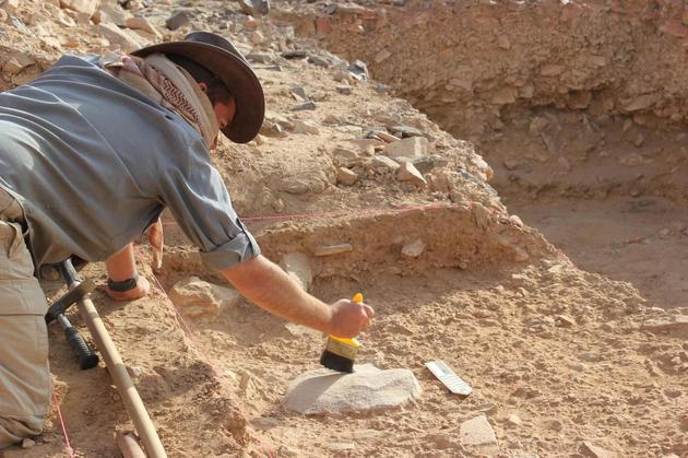 """考古研究称:直立人""""懒惰""""不求发展注定最终灭绝"""
