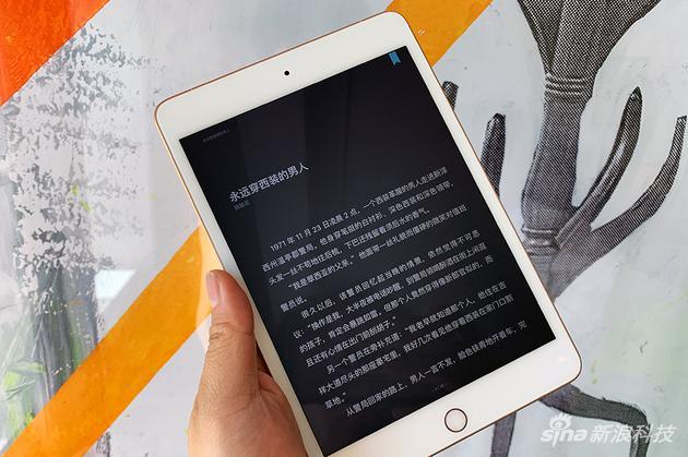 用iPad mini阅读