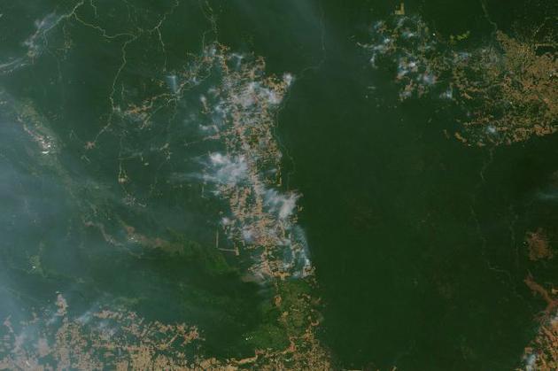 衛星正在追蹤亞馬遜雨林的火災情況