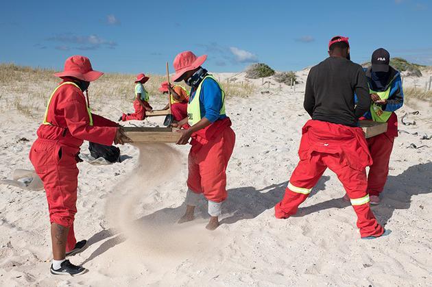 清洁工人在南非西开普的阿尼斯顿海滩收集塑料颗粒