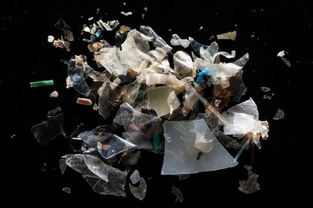 图中是在美国马里兰州Magothy河收集的塑料碎片