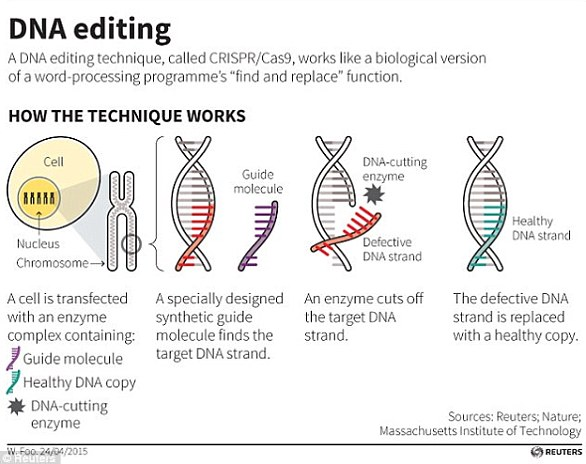 """科学家开发""""细胞计算机"""":人体就是一台大型计算机"""