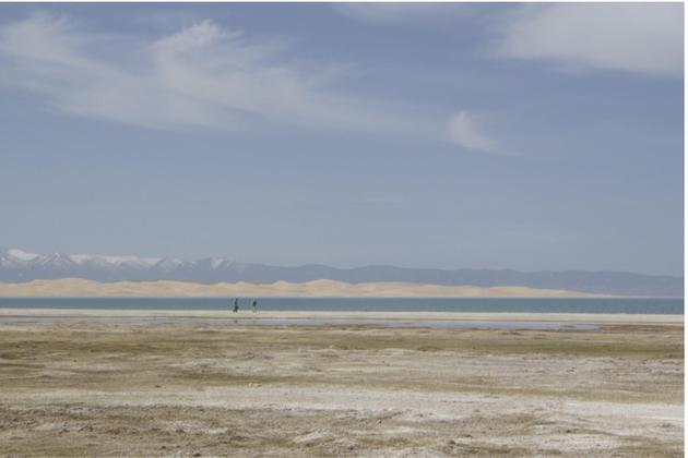图7 正在青海湖畔追寻环颈鸻的研究者们。(摄影师:黄秦)