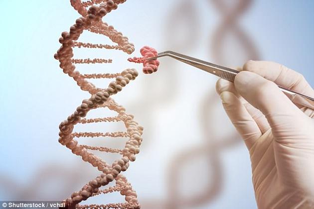 研究发现,相比家庭背景,一个与教育有关的基因指标能更好地预测儿童的教育和经济成功。这意味着通过生物学机制继承自父母的优势可能有着更大的影响。