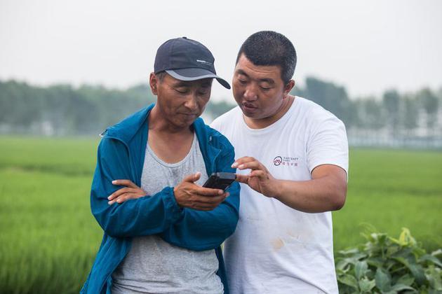五十多岁的农户(左边)在学习行使智能手持终端,图片来自:极飞