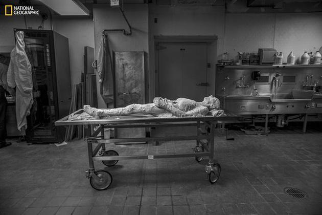 苏珊的尸体在冷冻前批准了聚乙烯醇封固处理。