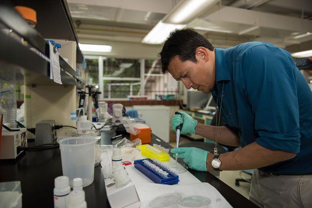 胡安•维拉瑞尔正在加拿大的极地地区研究苔藓植物。