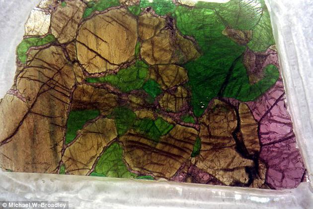 研究人员分析了岩石圈中地幔捕虏体(如图)——被经过的熔岩捕获并喷发到地球表面——的化学组成。