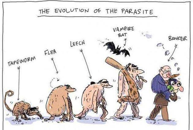 人类为什么曾经拥有尾巴,后来又没有了呢?