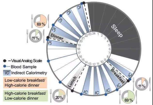 少吃早餐不利于控制体重 早饭吃够更容易瘦?