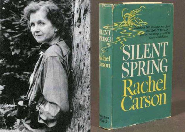 作者蕾切尔·卡森(左)与《寂静的春天》(右)一书。全书以寓言开头,向我们描绘了一个风景宜人、生机勃勃的村庄像魔咒一般陷入一片死寂,由此引出了以DDT为代表的化学农药对于水源、土壤、动植物甚至人类自身的严重危害。