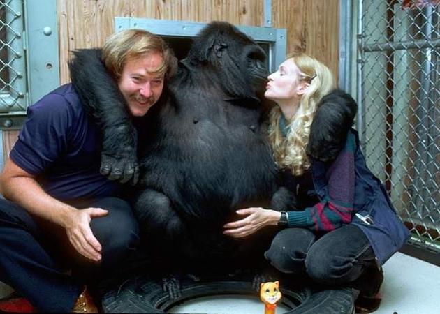 可可的双臂拢着摄影师罗恩·科恩和照顾者帕特森。