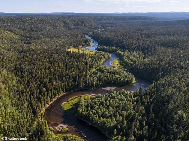 2、北方森林是指生长在高纬度环境的森林,这里的冰冻温度会持续6-8个月,位于北半球高纬度地区。