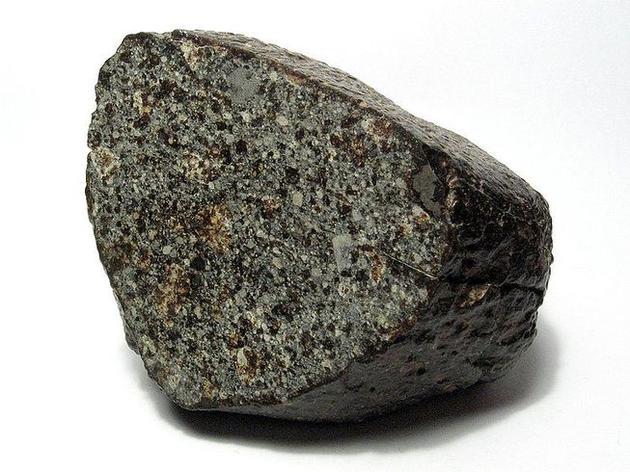 嗜热金属球菌能够在NWA 1172石质陨石上自养生长,利用陨石上的金属物质作为唯一的能量来源,实验结果显示,当这种微生物生长在NWA 1172陨石时,其细胞具有强烈的运动性,意味着它们认为这块陨石是非常美味的食物。