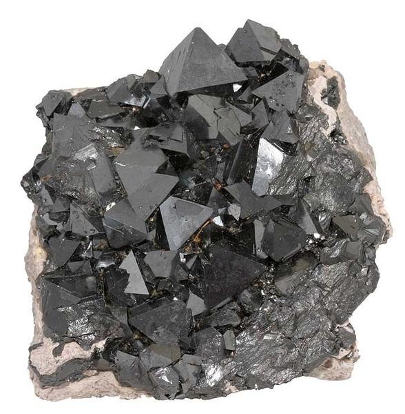 """磁鐵礦是非常重要關鍵的,含有磁鐵礦晶體的受體細胞可以記錄磁場變化,并將這些信息反饋至大腦。這幾乎與趨磁細菌具有相同的作用,它們的結構中含有納米等級的磁性晶體,叫做""""磁小體(magnetosomes)""""。它們本質上就像是生物羅盤,允許細菌進行導航。"""