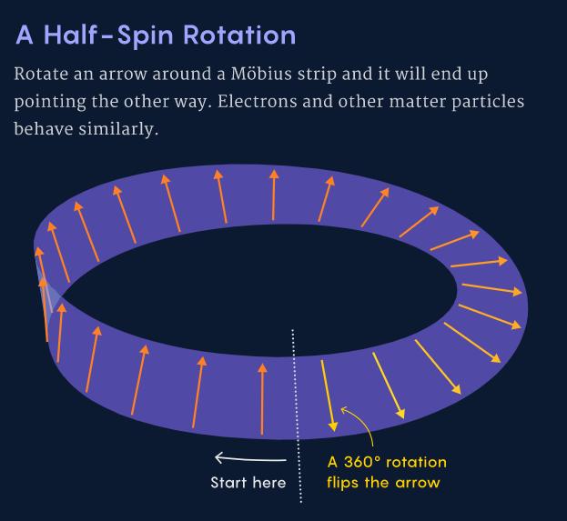 1/2自旋在旋转下的行为:将一个箭头沿莫比乌斯带旋转360°,它最终会朝向相反的方向。电子和其它物质粒子也具有同样的行为。(图片来源:Samuel Velasco/Quanta Magazine)
