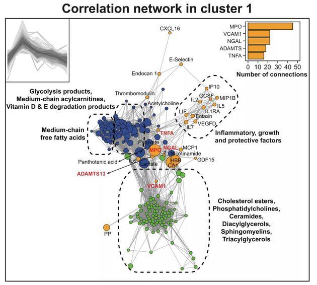 ▲ 第一组群分子构成的网络