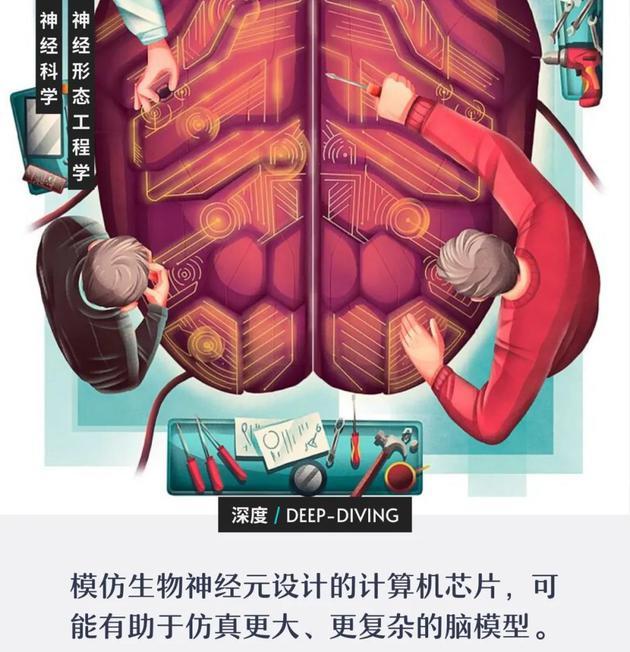 以假乱真的硅神经元,能复制人脑吗?