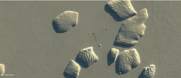 这张由哨兵2号卫星于2019年拍摄的图片还显示了宁尼斯冰川的粪便斑点(褐色)