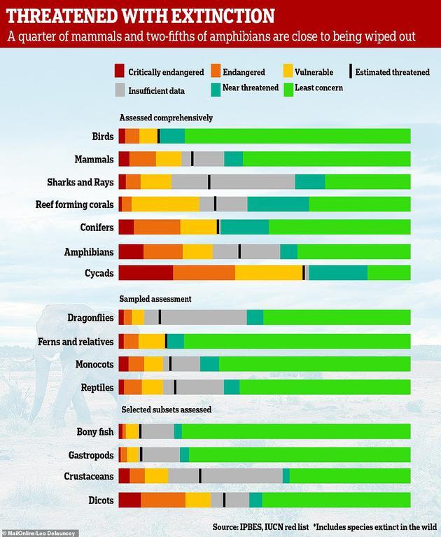超过40%的两栖动物、超过三分之一的海洋动物、以及近三分之一的鲨鱼和鱼类都面临灭绝的威胁。与该报告同时发布的一项研究指出,在所有动物中,两栖动物灭绝的风险最高,远超出此前预期。