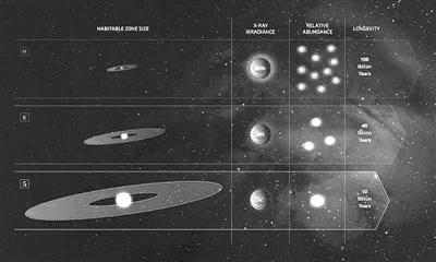 这张图片比较了银河系中G型恒星、M型红矮星和K型矮星的不同特征。图片来源:NASA官网