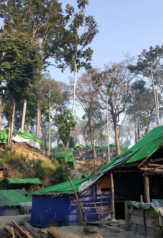 缅北琥珀矿区 2