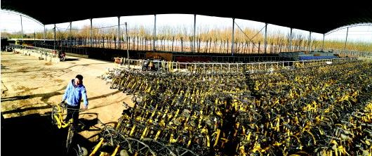"""23日,ofo泰安代理商的""""大本营""""里,地勤人员万民将弄好的幼黄车码放整齐,待来年天气转暖后上街投放。本报记者:梁敏 摄"""