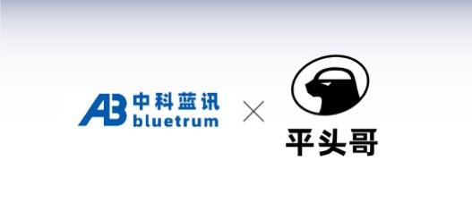 蓝牙芯片厂中科蓝讯签约阿里平头哥 共研物联网芯片